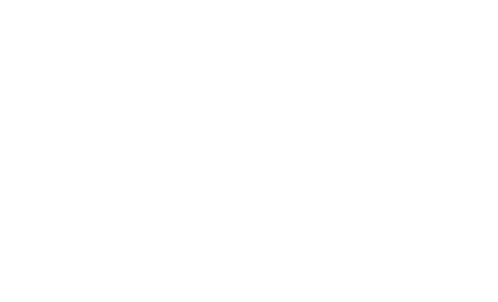 Party DJ Ian Fox Logo